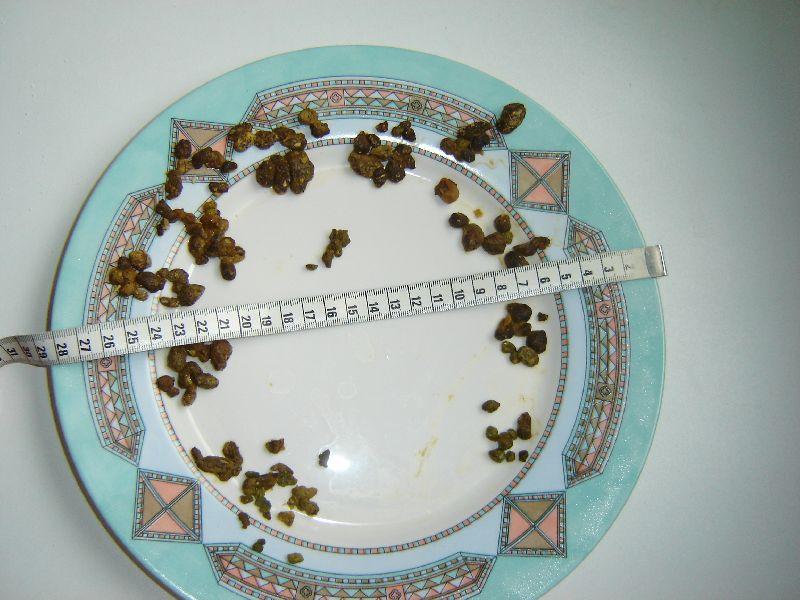 19e_13_03_2011_Dous_b_en_Liesbet_o Foto's leverreiniging - Natuurlijk gezond - Santura
